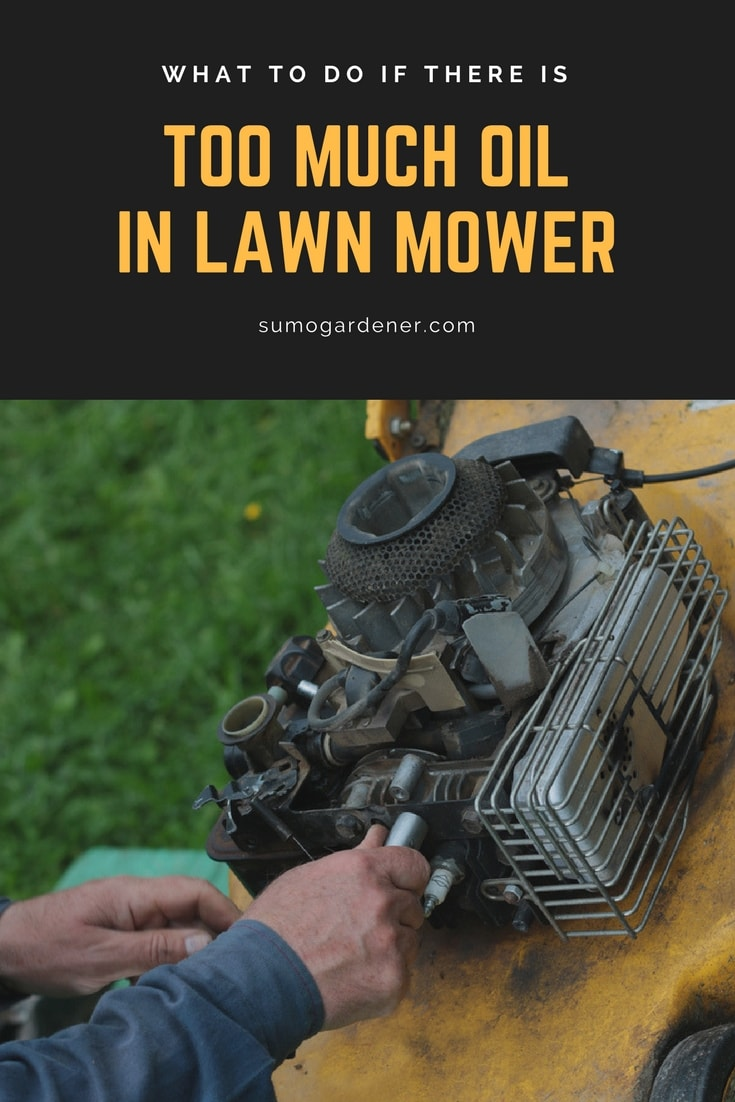 too much oil in lawn mower