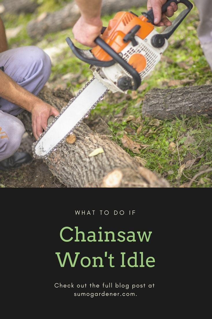 what to do if CHAINSAW wont idle
