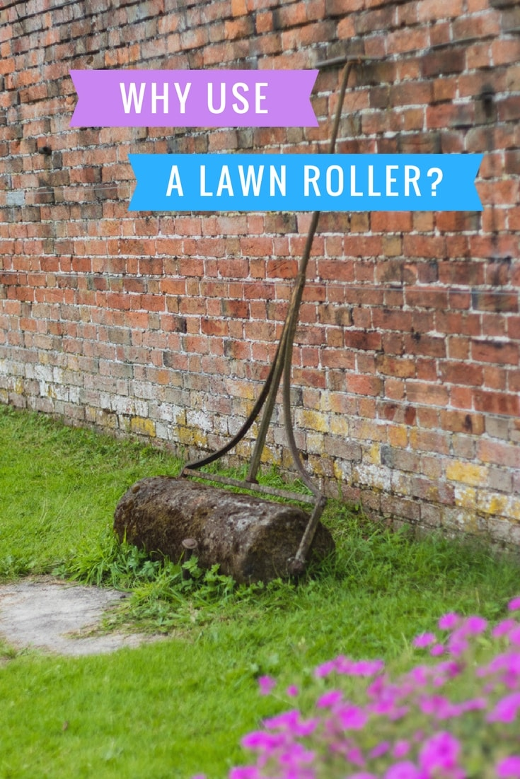 why using a lawn roller
