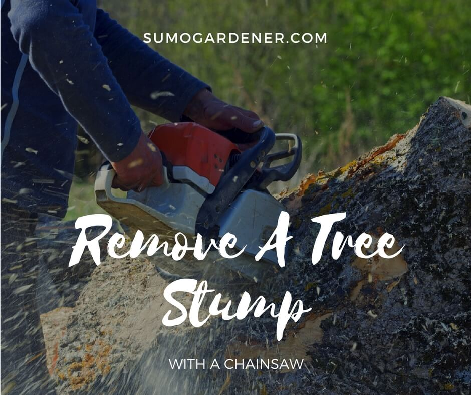 How to Remove A Tree Stump With chainsaw