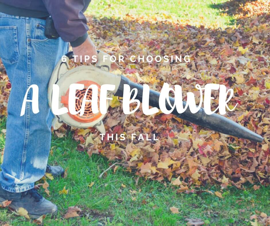 How to choose a leaf blower for this fall
