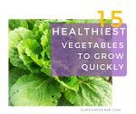 15 Healthiest Vegetables to Grow Quickly