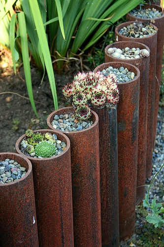 Steel Cylinders with Plants: Cool Edging Idea