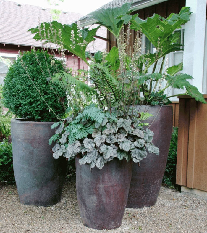 Oversized Flower Pots
