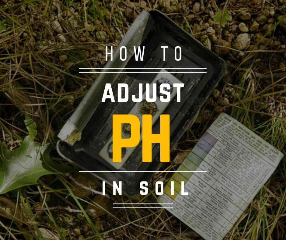 How to adjust ph in soil
