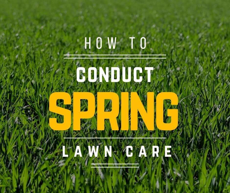 How to conduct spring lawn care