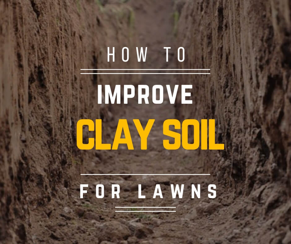 How to improve clay soil for lawns
