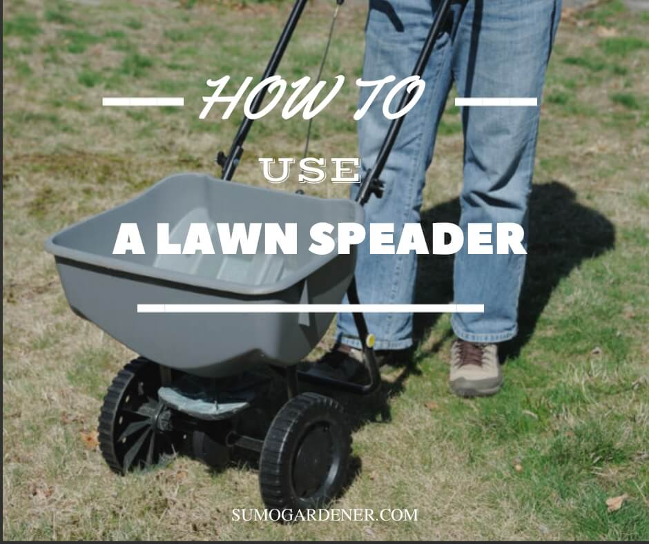 How to use a lawn spreader
