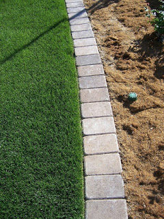 paver mow strip