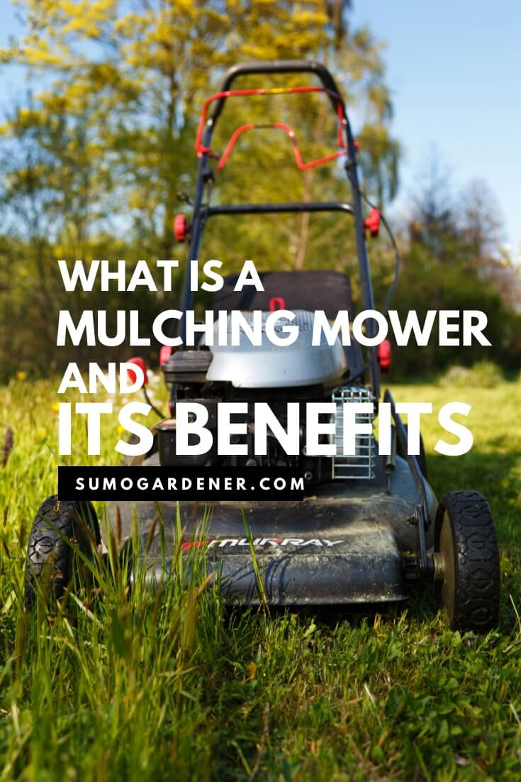 What is a mulching mower