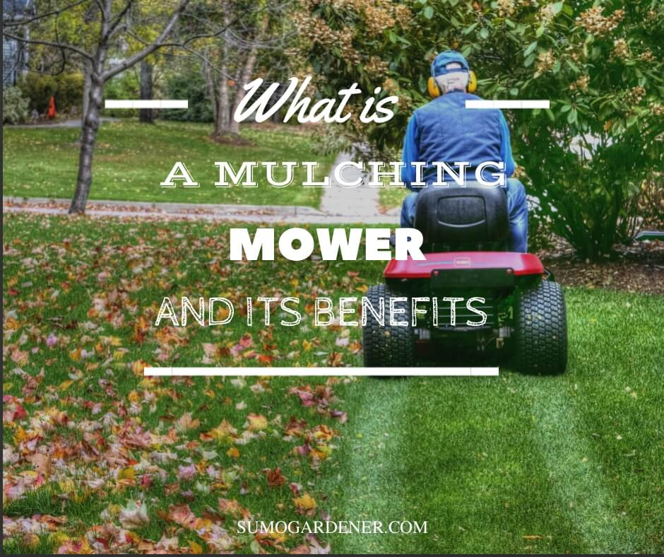 What is a mulching mower and its benefits