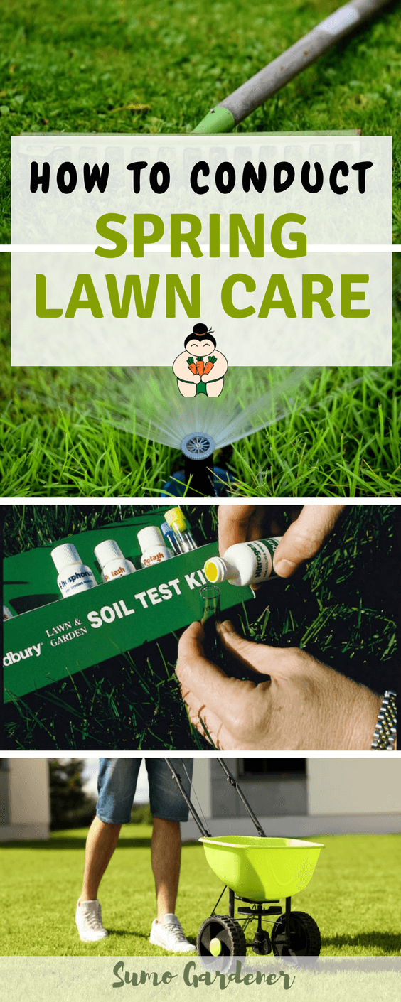 How To Conduct Spring Lawn Care #sumogardener #springgardening #lawncare #gardening