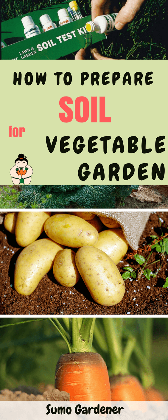 How To Prepare Soil For Vegetable Garden #soil #vegetablegarden #gardening #sumogardener