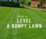 How to Level a Bumpy Lawn