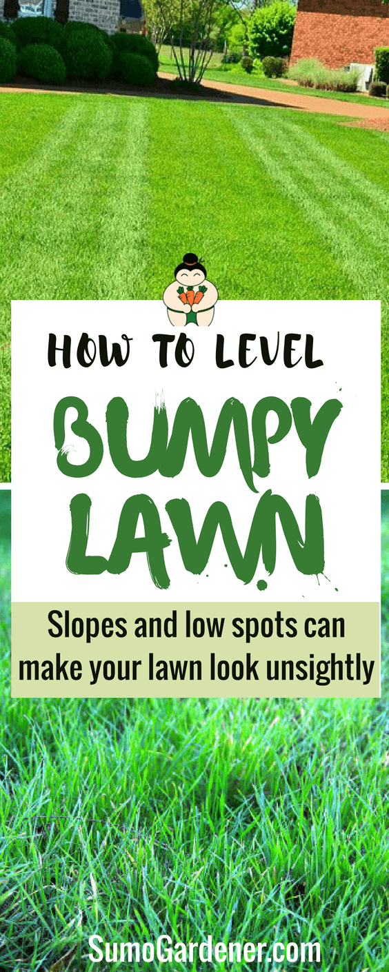How To Level a Bumpy Lawn (Causes and Fixes)- Sumo Gardener
