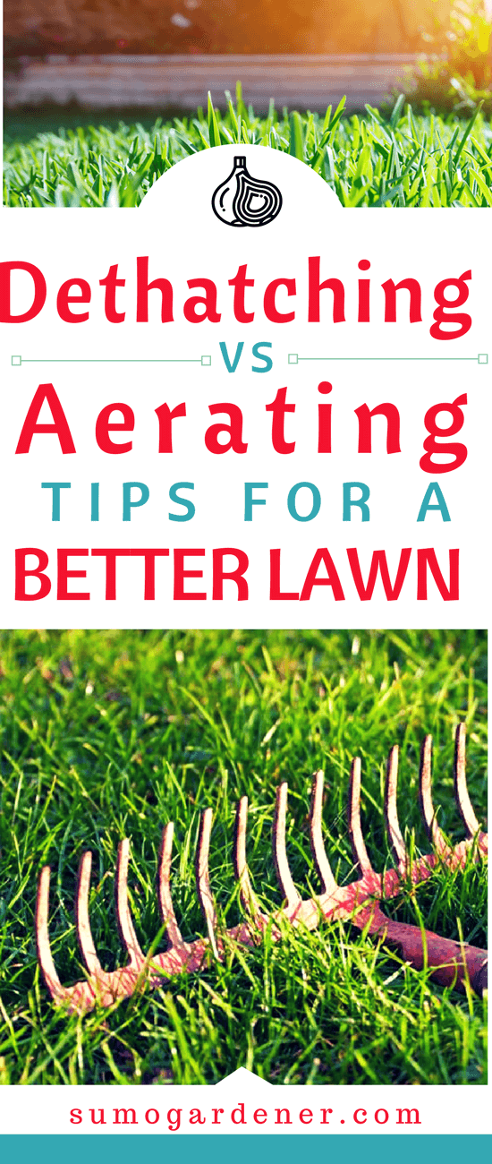 People often get confused between dethatching vs. aerating. These two techniques address two entirely different issues. They are not interchangeable yet being the perfect solution for greener lawn. Let's dig into the topic and find out the best way.