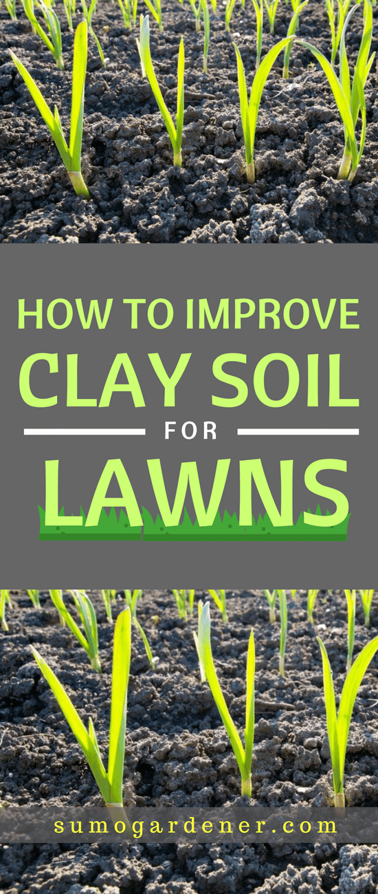 You can still improve the soil to help your grass get the nutrient it needs for deep root establishment and optimal growth. We hope that our guide helped you changing your clay soil for the better.