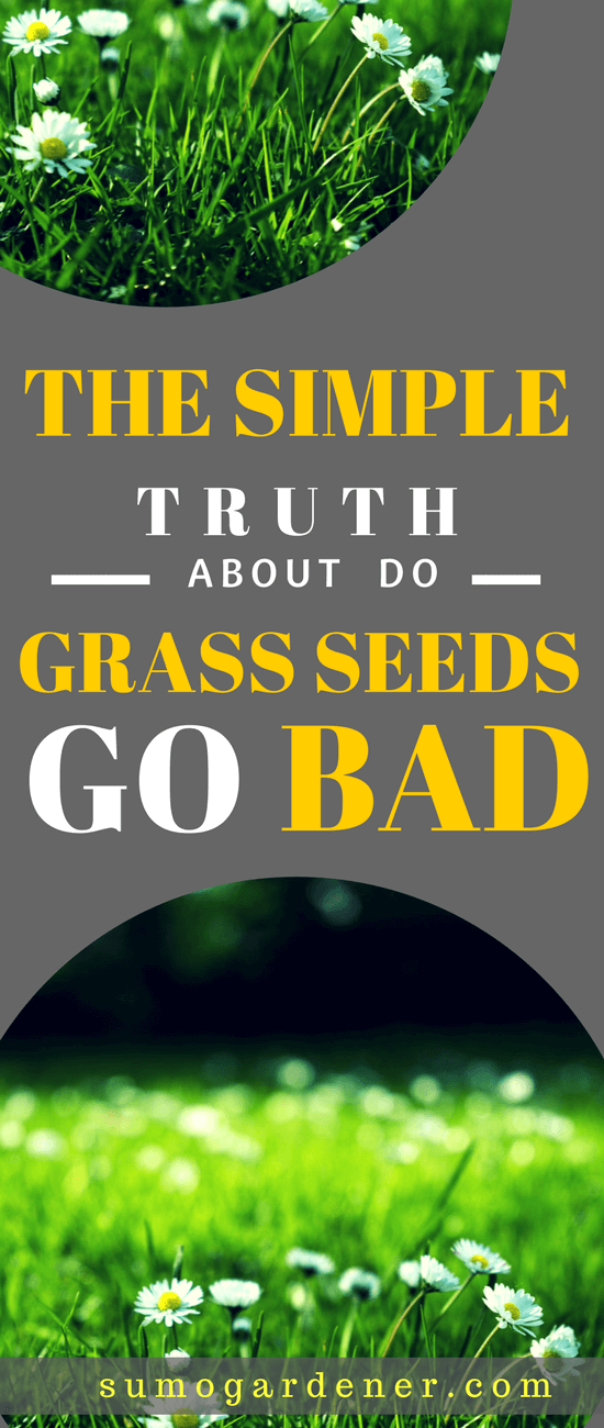 When you stumble upon three bags of unopened grass seed, you are sure to wonder do grass seeds go bad. It would feel wasteful to have these full bags and not be able to use them. However, no one wants to waste their time sowing grass seed, only to realize it was bad.