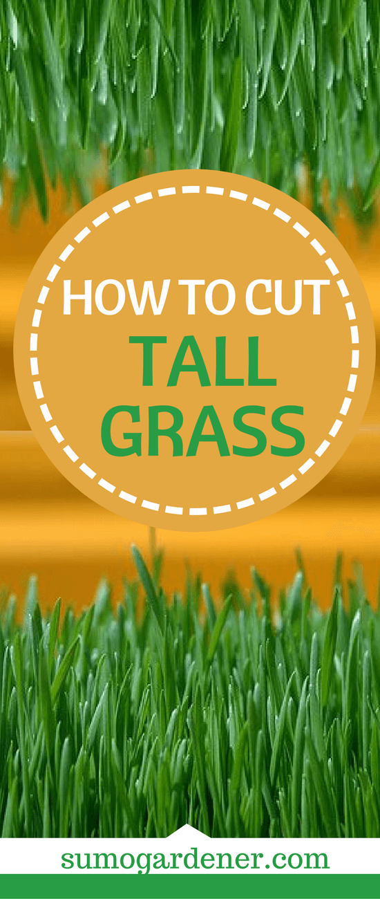 These are several different ways on how to cut tall grass in your lawn. As you can see, cutting tall grass can be daunting. Therefore undoubtedly, maintaining the height of your grass is essential, to avoid dealing with taller ones. So, start cutting your grass now and keep a healthy lawn.