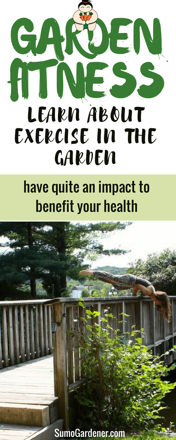 Without the shadow of a doubt, tending a garden is a hobby that will not only help you exercise and get fit but help your mindset and spirit evolve.