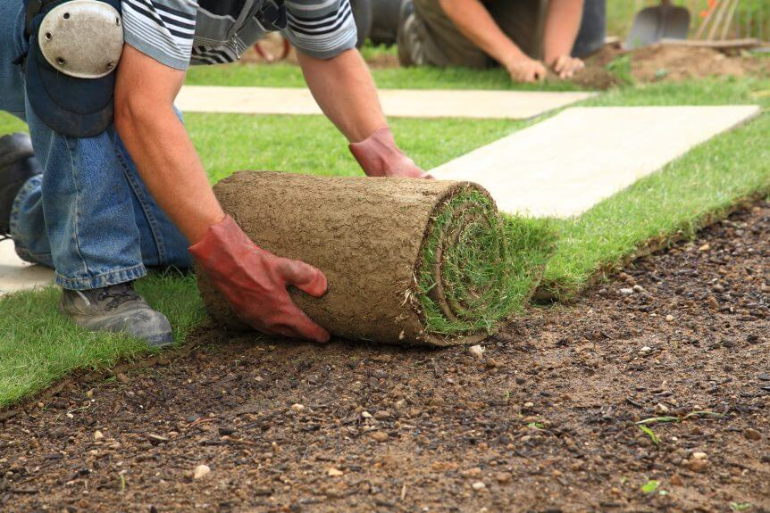 Starting Your Own Landscaping Business