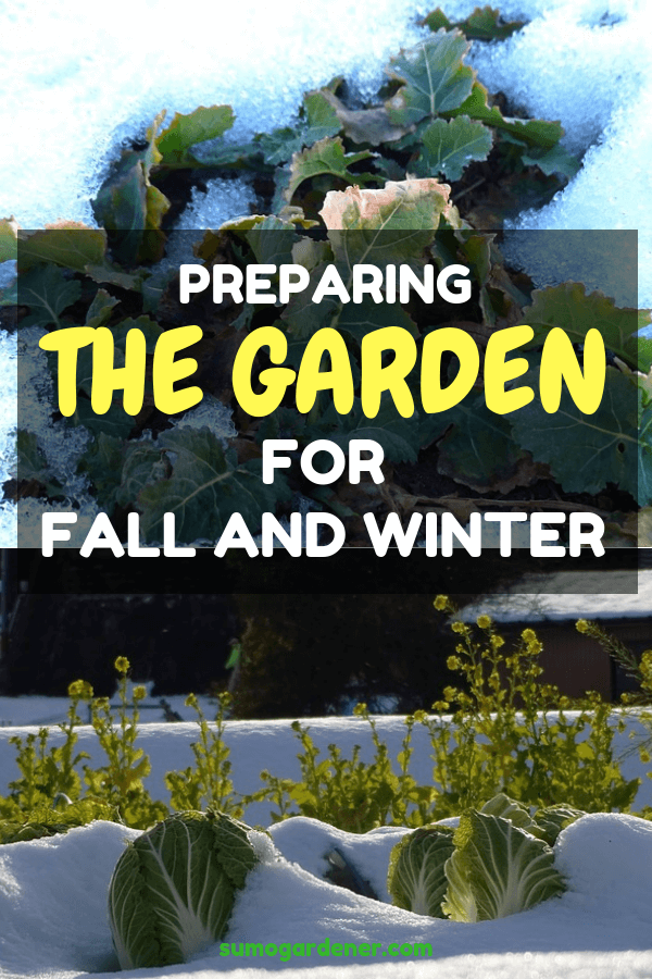 Preparing the Garden for Fall and Winter