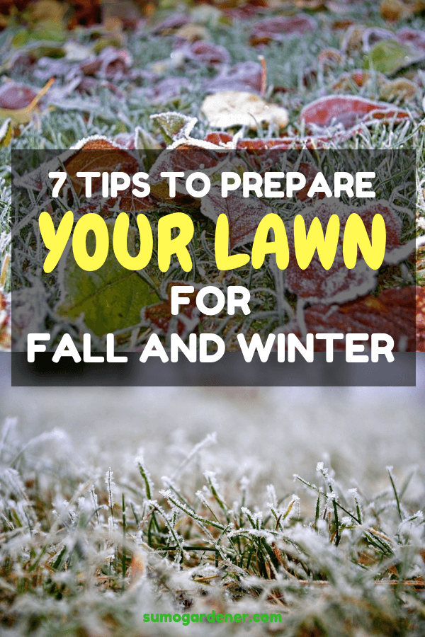 Follow 7 simple tips and keep your yard looking healthier, greener and lusher than ever for the next season.