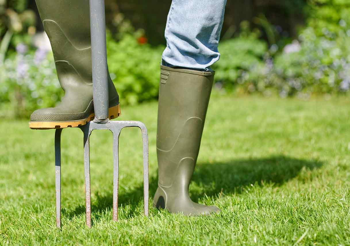 Why Aerating Your Lawn Matters