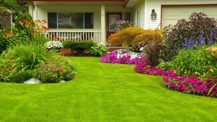 design and finalize lawn space
