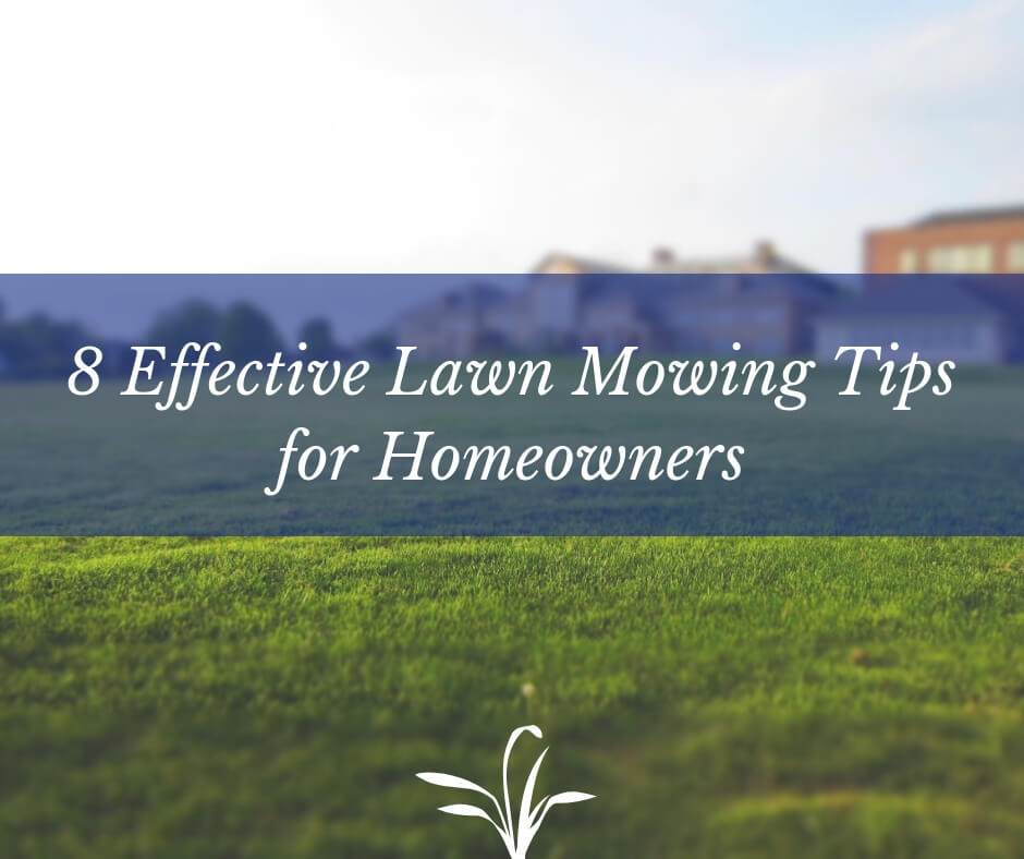 8 Effective Lawn Mowing Tips for Homeowners