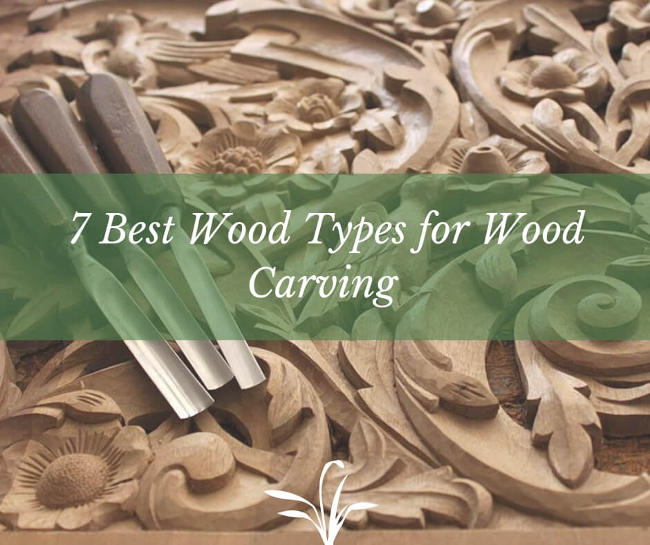 7 Best Wood Types For Wood Carving Sumo Gardener