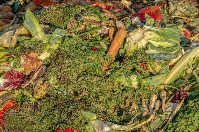 Benefits of Compost Heap