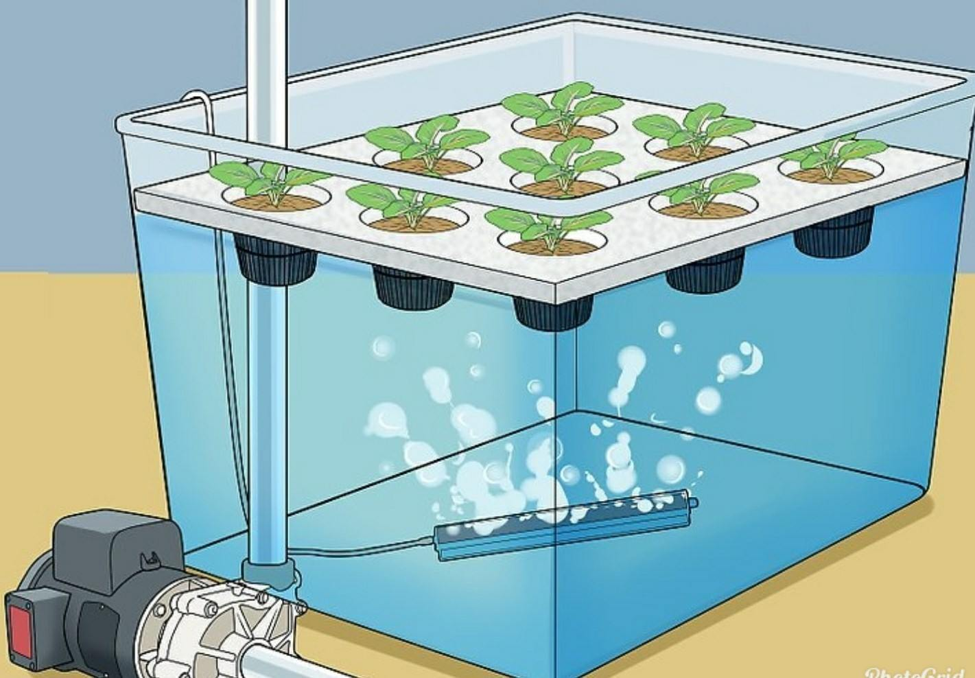 How To Build A Hydroponic Grow Box? - Sumo Gardener