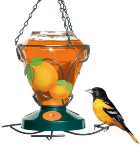 Enthusiastic Pet 750 Deluxe Hand Painted Oriole Feeder