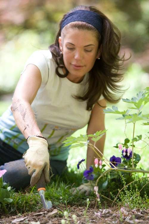 Tips on digging the hole for your plant