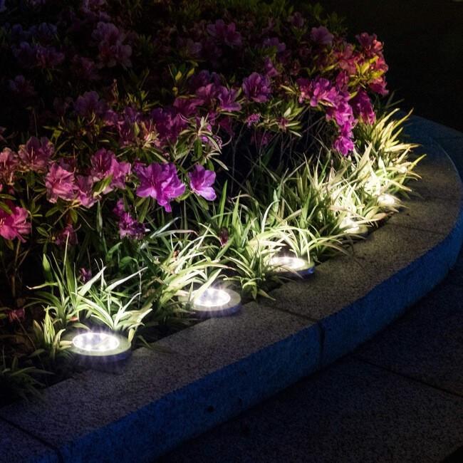 Fairy lights make everything prettier