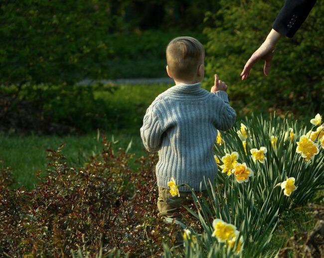 benefits of baby in the garden