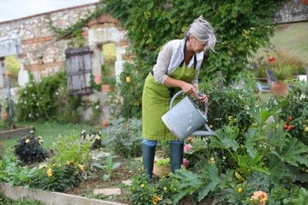 DIY lawn care benefits