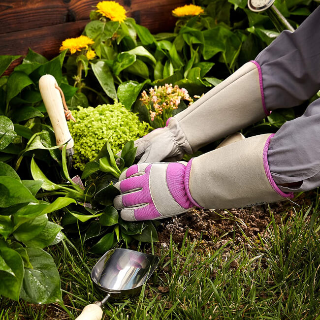 Garden Gloves in 2020