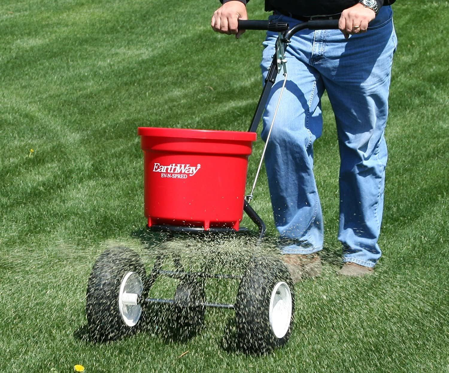 Man using Earthway spreader on his lawn distributing fertilizer
