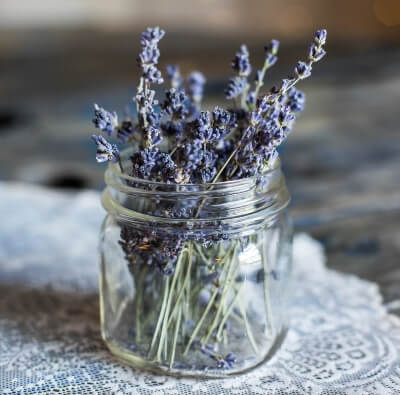 Lavender reduces stress levels, lowers blood pressure and heart rate to provide a relaxing sleep