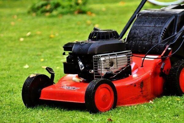 choosing the best lawn mower for you
