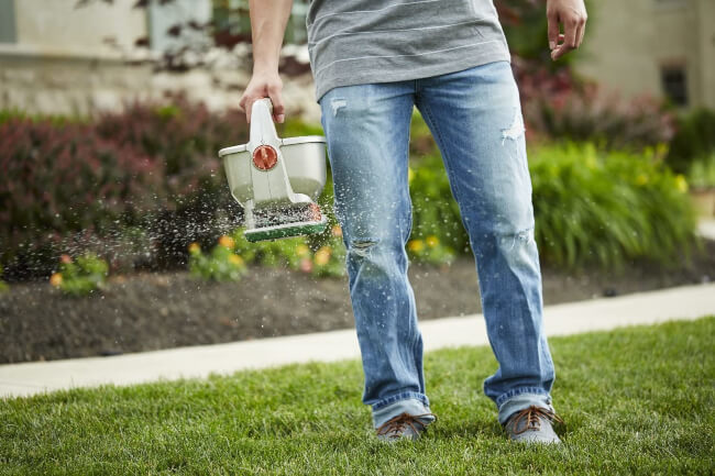 Best Hand-held Lawn Spreader in the market