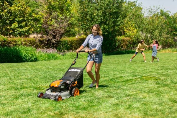 How to Maintain a Healthy Lawn All Year Round?