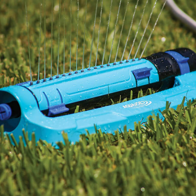 How to properly water your lawn?