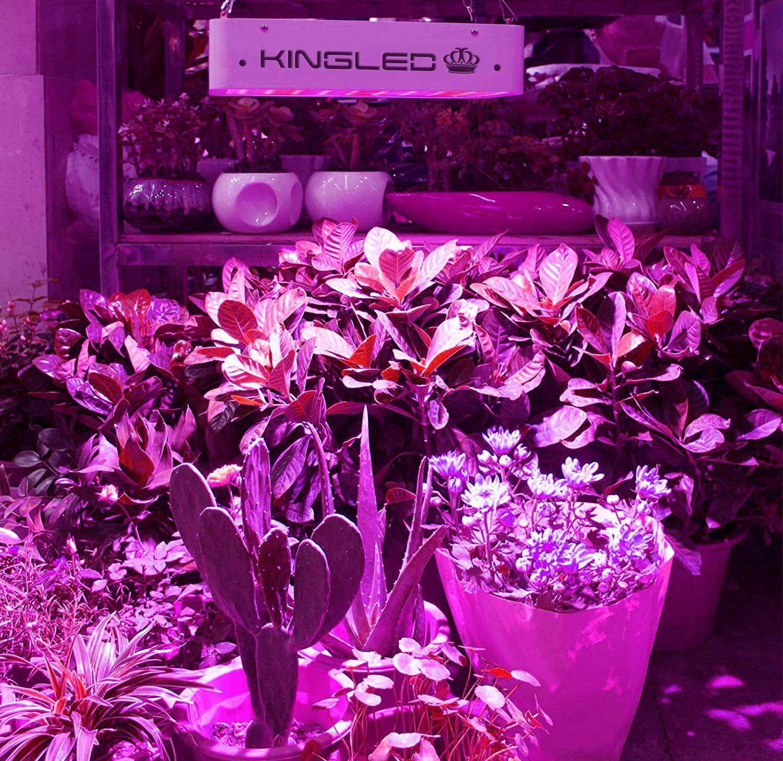 King Plus 600W LED Grow Light Full Spectrum for Indoor Plants Veg and Flower