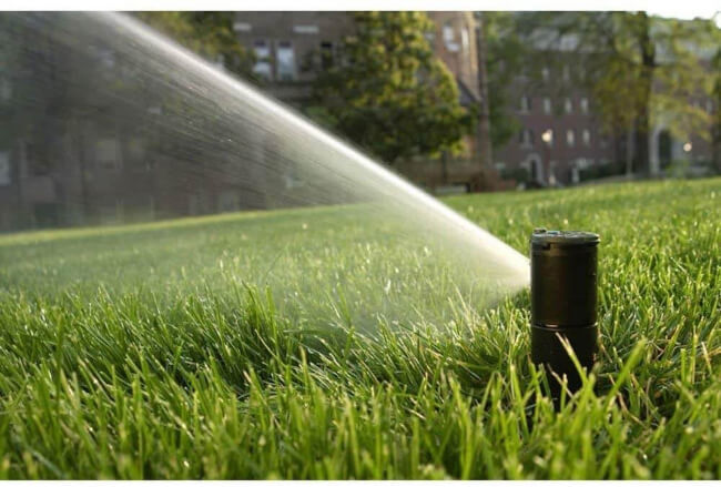 Sprinkler heads boast the most diversity by far of all the elements of a sprinkler system