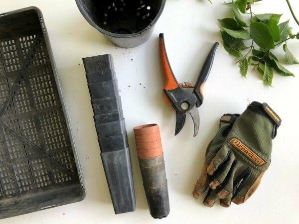 Tools needed for preparing your spring flower garden