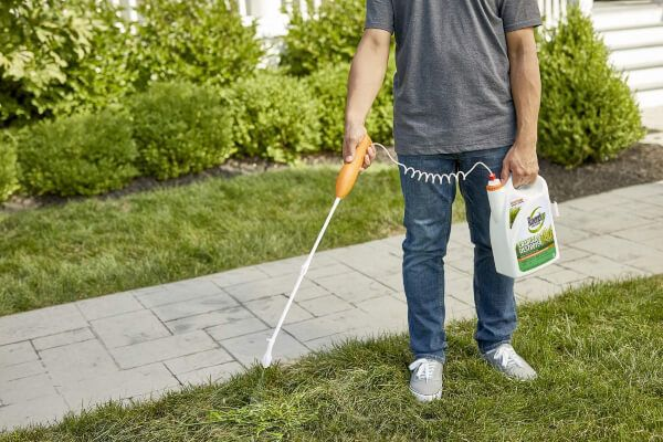 Using organic herbicides for your garden