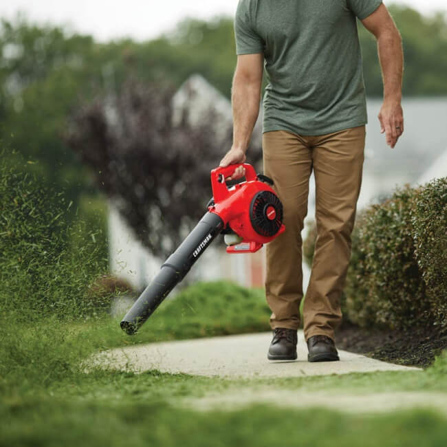 best tools for gardening won't miss a Garden Vacuum Cleaner